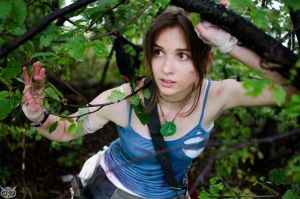 Lara Croft 2013 by SilverGrayDash