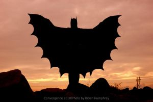Batman by Sunset by bryanhumphrey