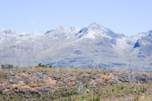 NZ sparse mountain top by Chunga-Stock