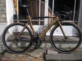 bike for Pattack 2 by raamon