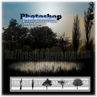 Tree Brush SET 1 PS by FrostBo