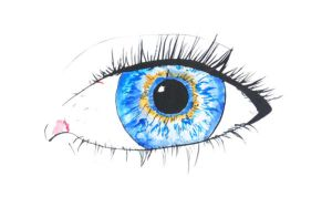 Eyes worksheet 2 by Faith-giver