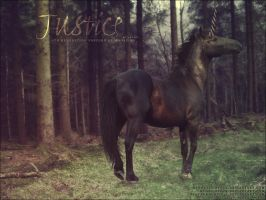justice by renderedsublime