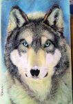 Portrait of a wolf. by TheComicArtist