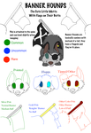 Banner Hounds Species Sheet- Redone by boxes-of-foxxes