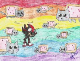 How Shadow Met the Nyan cats... by soulsonic14