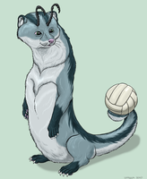 Skiltaire with volleyball by Greedywoozle