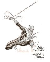Spider-Man - Japan Expo 2008 by SpiderGuile