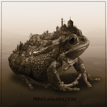 Prince of the Kingdom by AnyLord