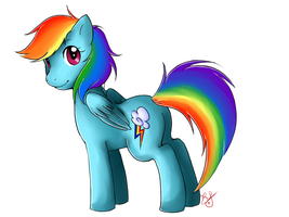 MLP- Rainbow Dash by HoneyAppleNinja