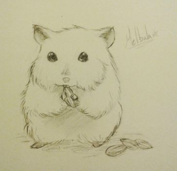 Wee Hamster~ by Melbula