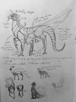Butterfly Dragon concept art by BeeTrue