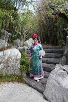 Chinese costume 208 by fa-stock