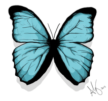 Butterfly by Drpkick1