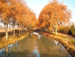 Canal du Midi VI by fairling-stock