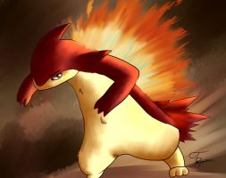 Typhlosion~ by Trozte