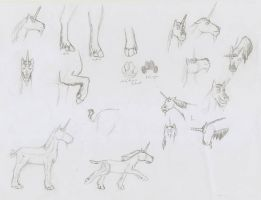 Unicorn character sketches by TheSpectral-Wolf
