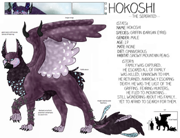 Hokoshi Ref Sheet by Gazzelles