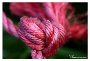 red rope by narcosomniac