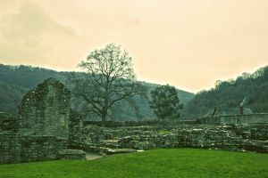 Tintern Abbey Ruins by JamesTPhotography