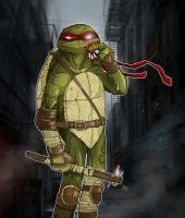 Donatello 2 by paulorocker