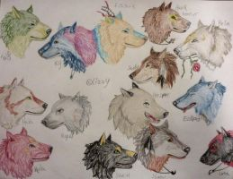 Headshots Free Requests Examples by Lizbeth-Lund
