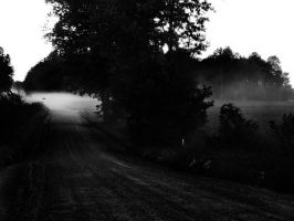 The foggy road II - B-n-W by brandychristine1987
