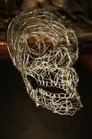 Wired Skull by Seath
