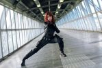 Agent Romanoff by Aires89
