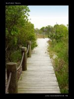 Beach Nature Trail stock by FairieGoodMother