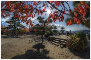 Matsumoto's trees by Graphylight