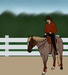 2014 On-Going Training Show - Reining by FallbrookeEC