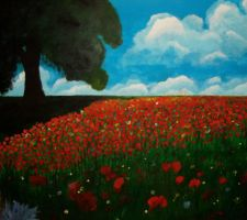 Poppie field by liekekoster