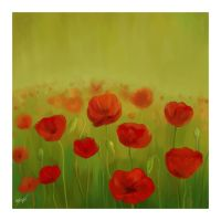 field of poppies by praveen3d