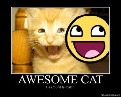 AWESOME CAT by LOLMANIC45