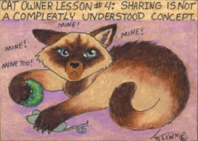 Cat Owner Lesson 4 - Art Card by stephanielynn