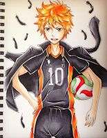 Haikyuu !! by Fangirl342