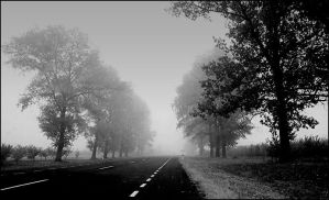 Lost in the fog by rumun