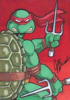 Sketch Card #24 - Commission: Raphael by destinyhelix