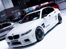 THE HAMANN by SisMisBoy