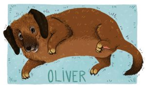 Oliver by NicoleWest