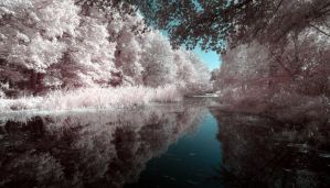 Michelham Priory Moat by wreck-photography