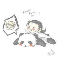 APH: china and russia panda by AlaisL