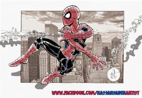 Spider-man by scarecrowhassan