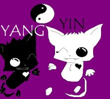 yin and yang the ghost cats by izmene