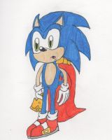 King Sonic is confused by Piplup88908