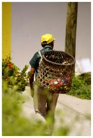 Man with Food Basket by JacquiJax