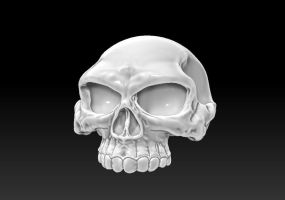 zbrush skull w.i.p by The-Silver-Forge