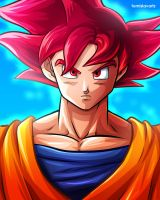 Son Goku (Super Saiyan God) by TomislavArtz