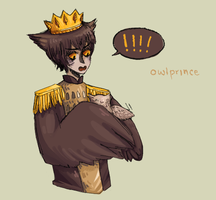 owl prince by omgAshley
